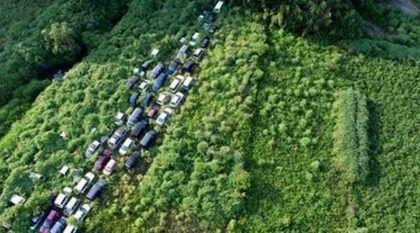 Civilização engolida pela Natureza: Imagens (de impacto) revelam como a Região de Fukushima está hoje em dia