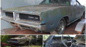O resgate de um Dodge Charger 1969 abandonado (no mato) por 20 anos