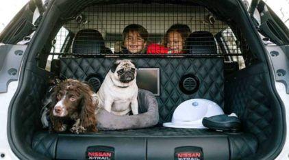 Nissan apresenta SUV especial (e incrível) para o passeio com cachorros